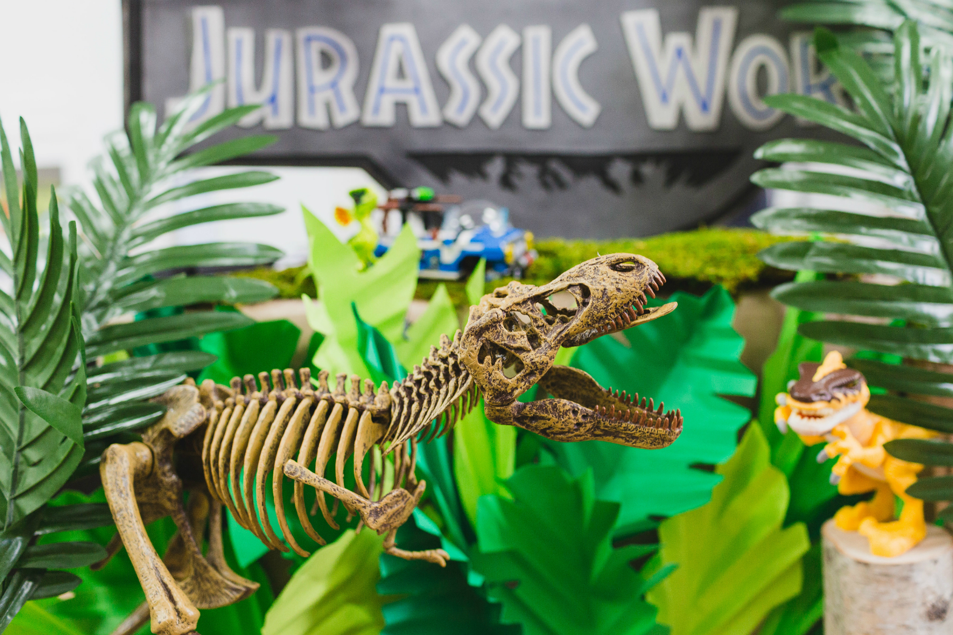 Dinosaur Birthday Party Black Twine