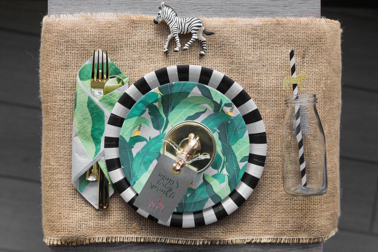 Safari Baby Shower Place Setting | Black Twine