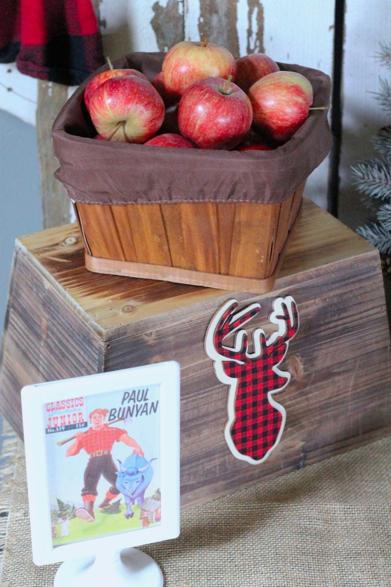 Apples on Food Table for Lumberjack Party by AK Party Studio | Black Twine