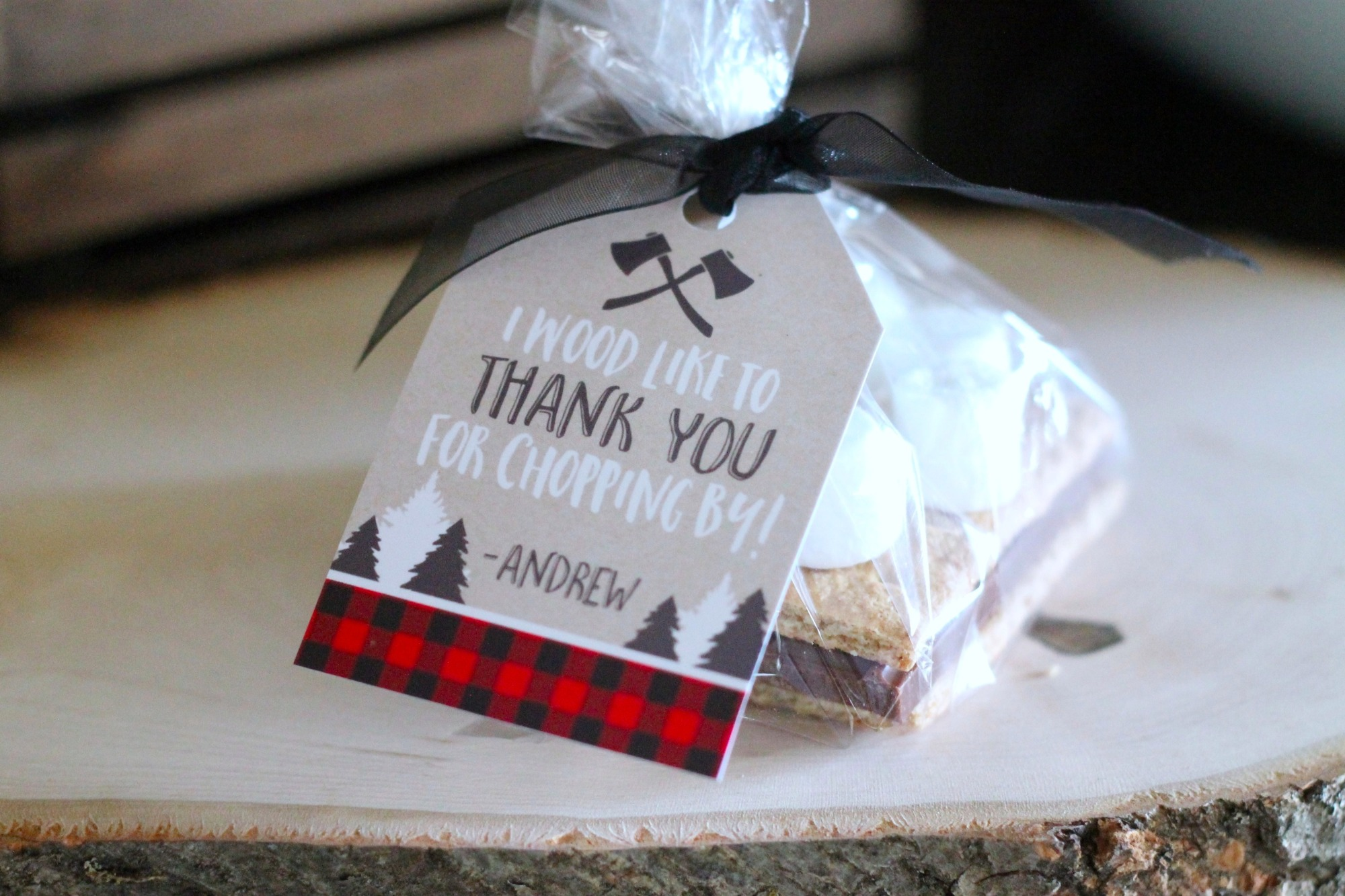 Smores Favor for Lumberjack Party by AK Party Studio | Black Twine