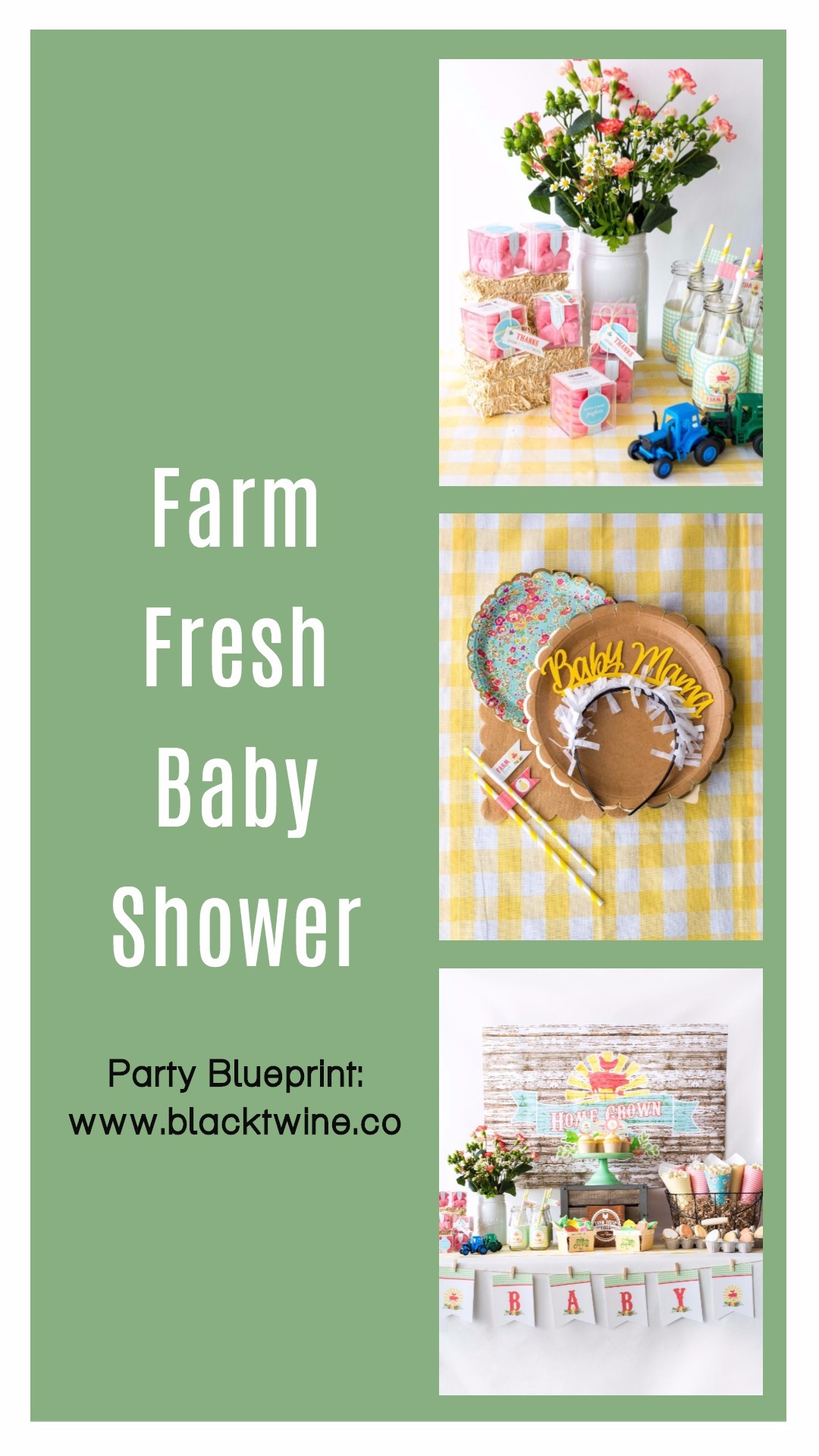 Farm Fresh Baby Shower Styled by Black Twine
