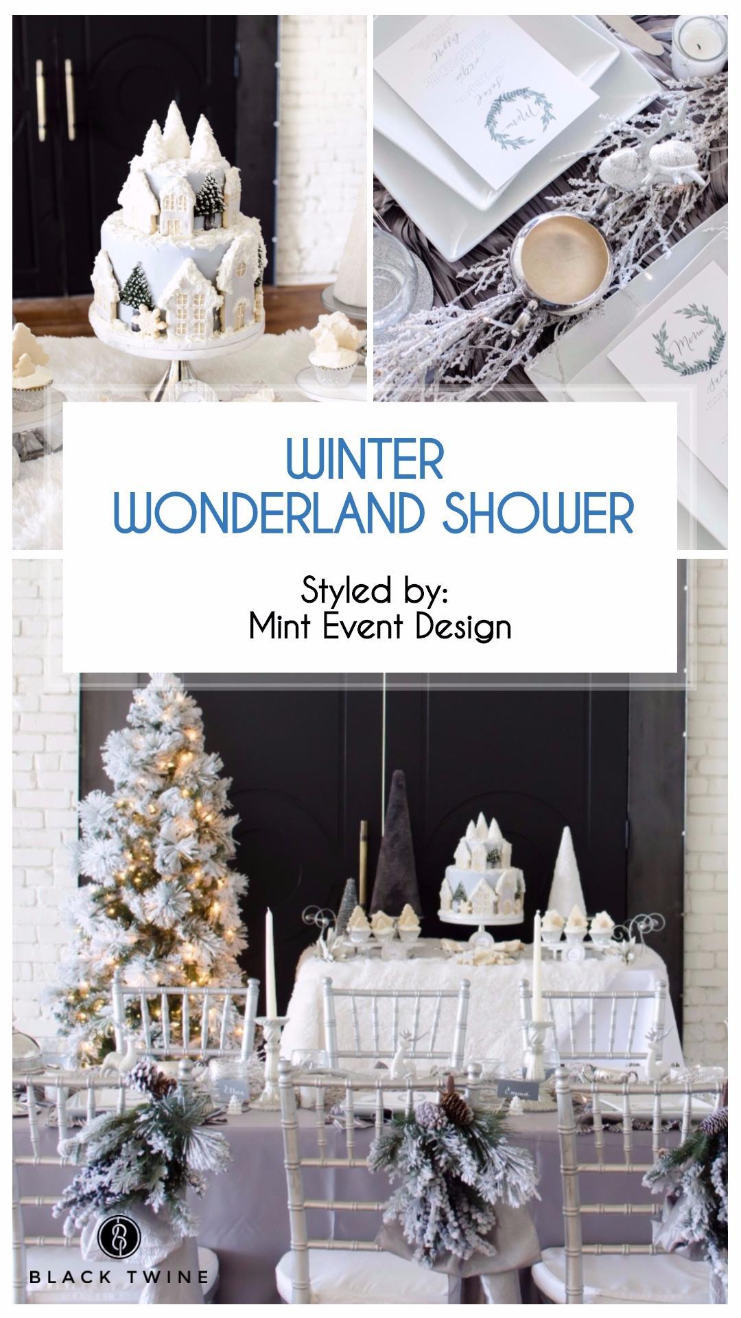 Winter Wonderland Shower Styled by Mint Event Design | Black Twine