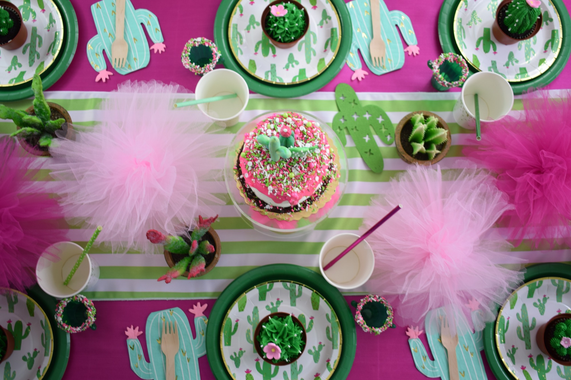 Tablescape & Place Settings (from Above) - Cactus Cutie Party Styled by A Party Made Perfect | Black Twine