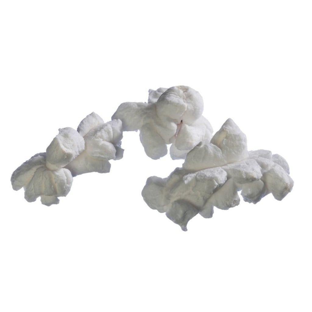 White Salted Popcorn from Grand Rapids Popcorn
