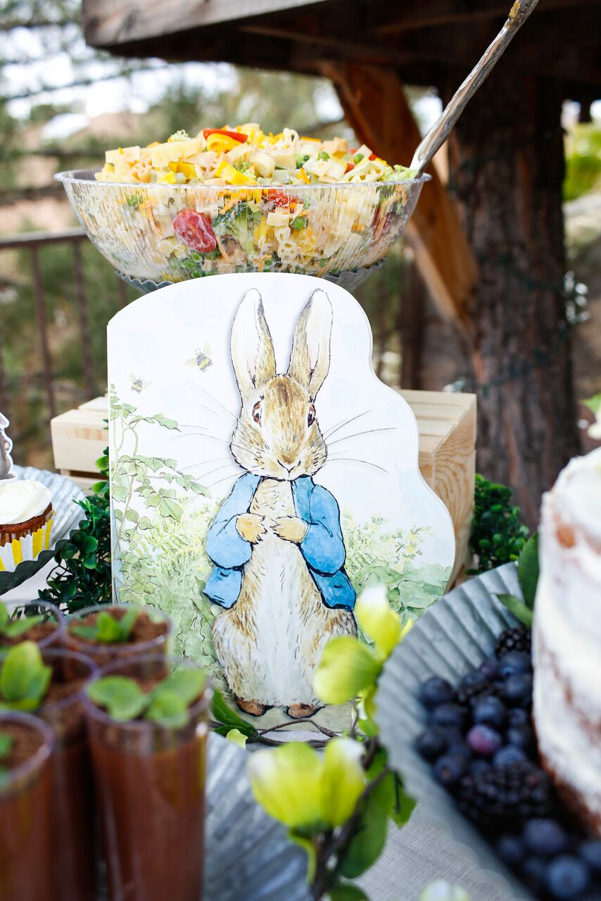 Peter Rabbit Party Decor by Jordan's Easy Entertaining