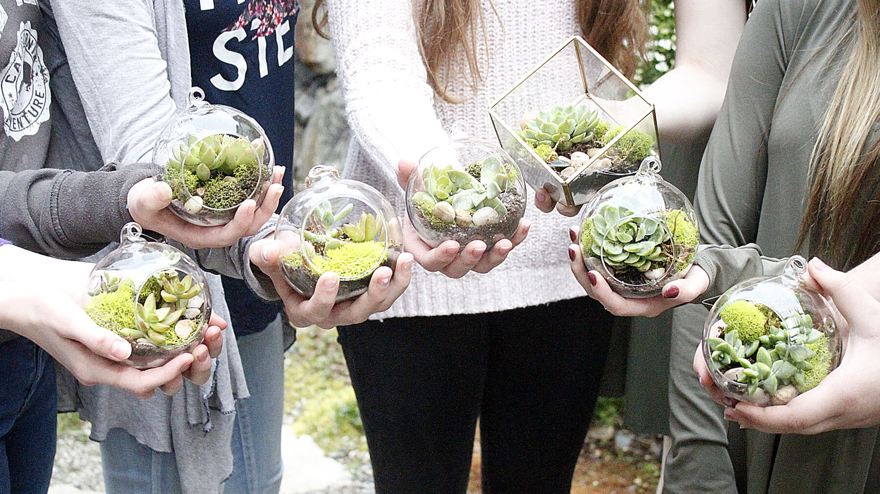 Terrariums from Modern Terrarium Making Party styled by A Lovely Design   Black Twine