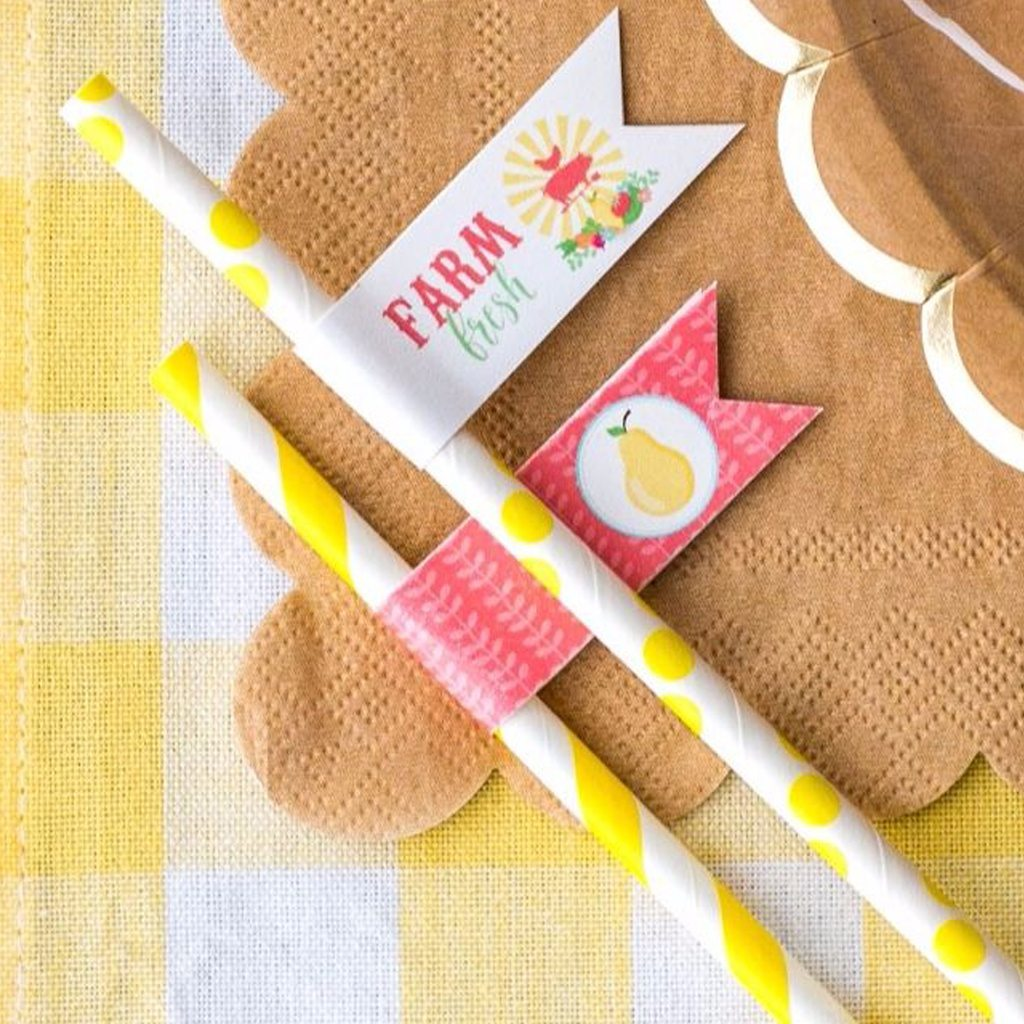 Straw Flags (DIY Printable) by Jen T by Design