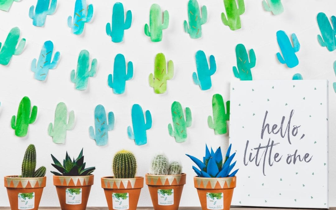 DIY Cactus Baby Shower Backdrop
